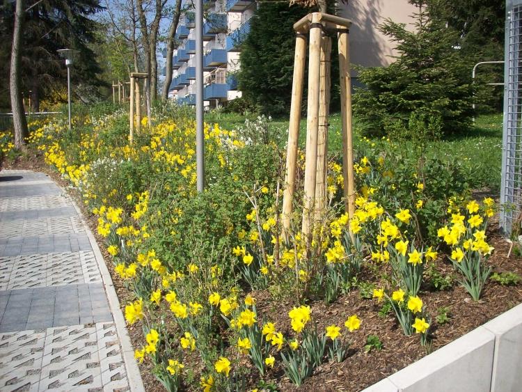 Werke von franz marc der blaue reiter landschaften in for Gartengestaltung chemnitz